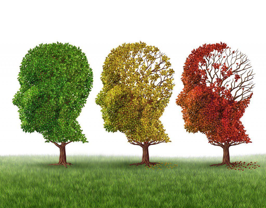Essay on alzheimers disease