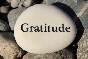 Positive reinforcement word Gratitude engrained in a rock
