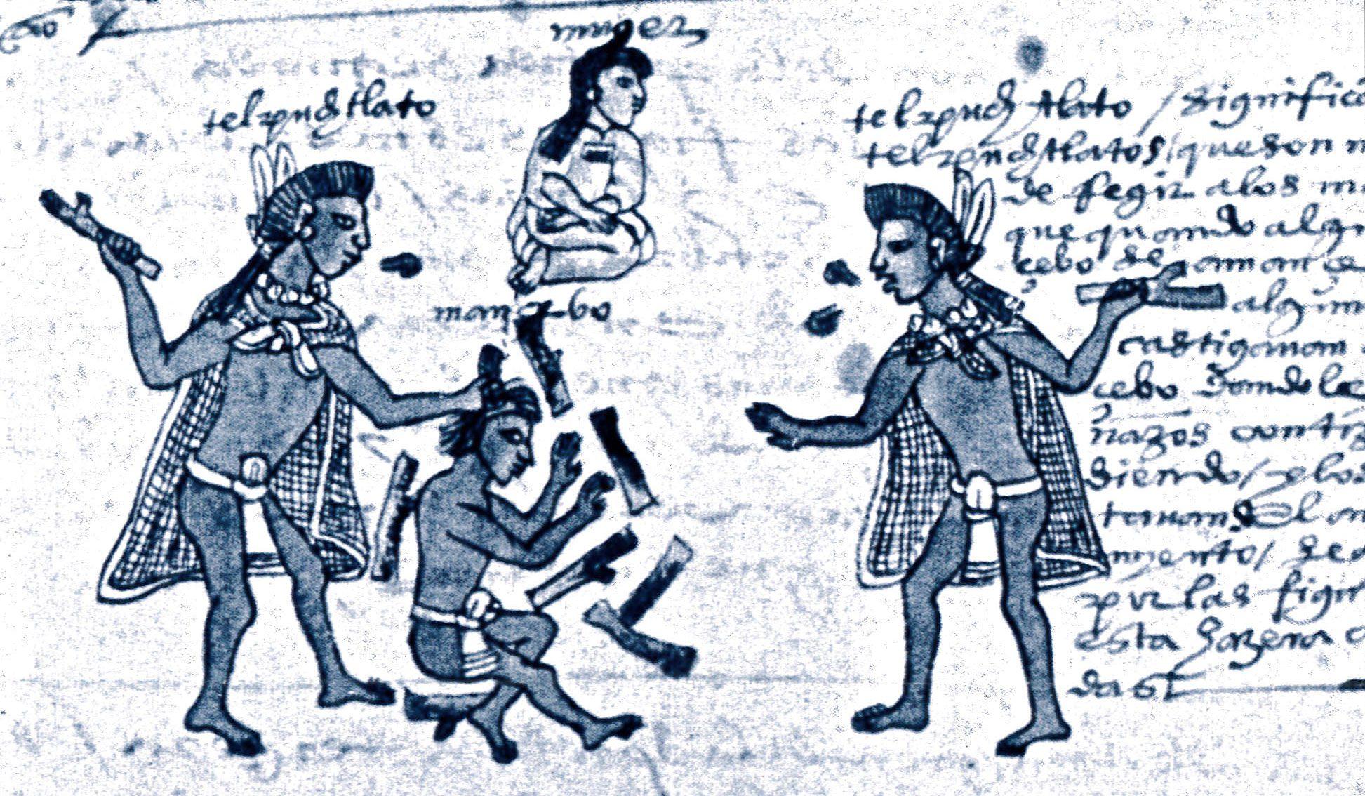 codex-mendoza