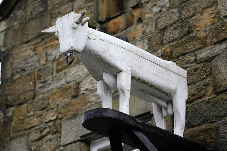 Ribchester_Bull