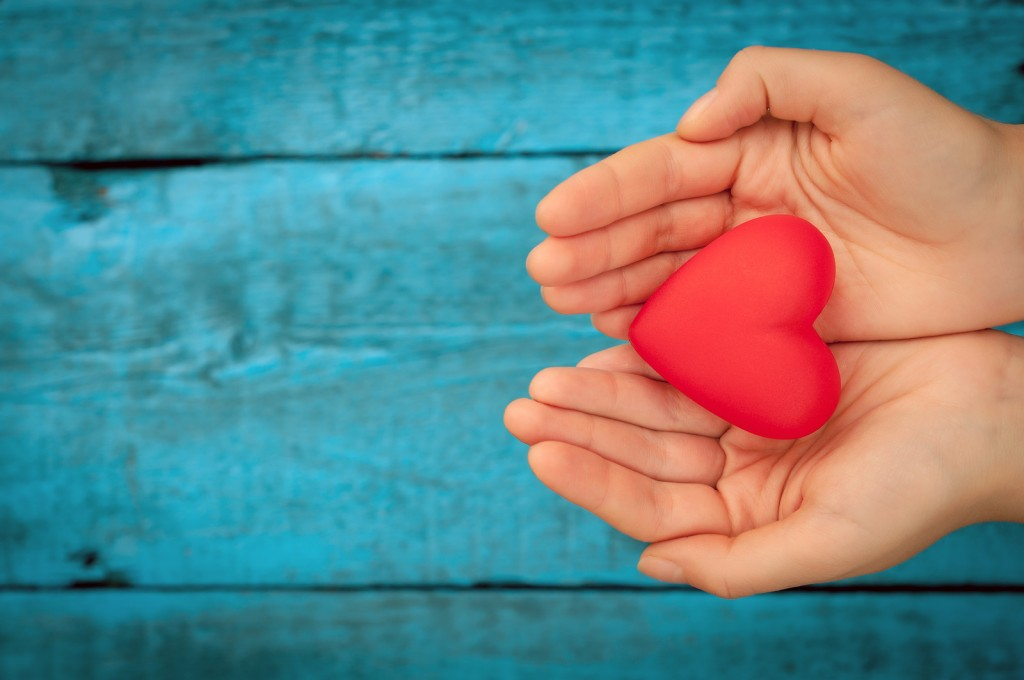 Image result for heart in hands