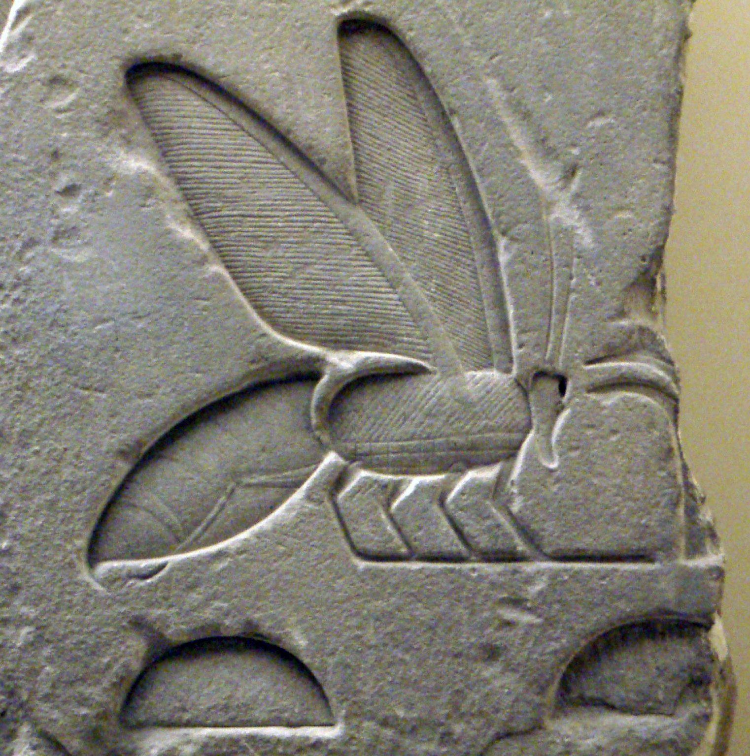 bee-hieroglyph