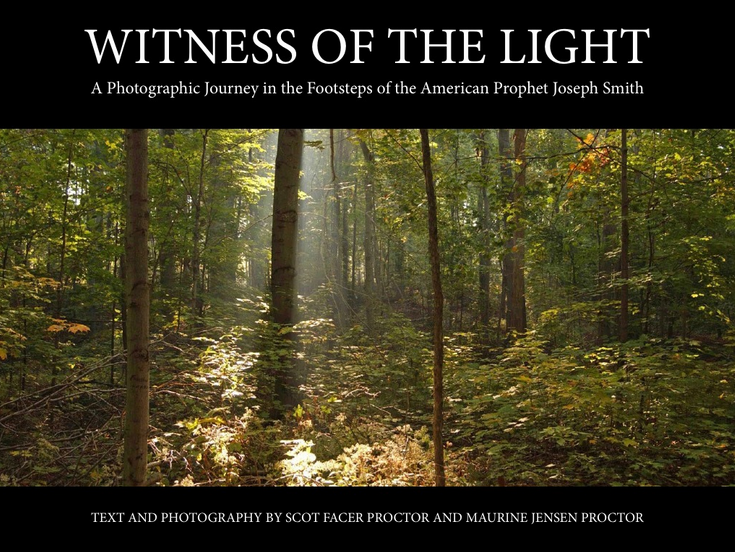 Witness of the Light Cover
