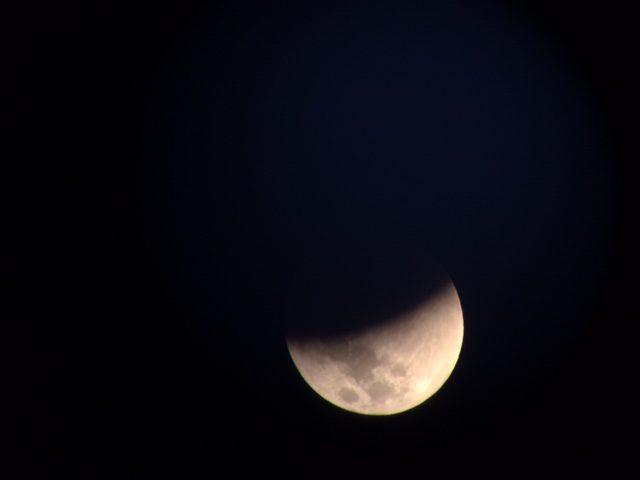 Picture #2 - Eclipse Logan photo
