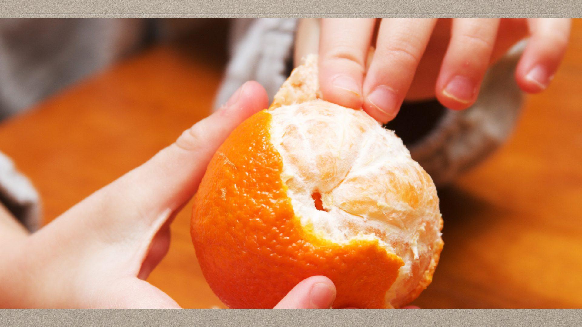 01-04-Orange