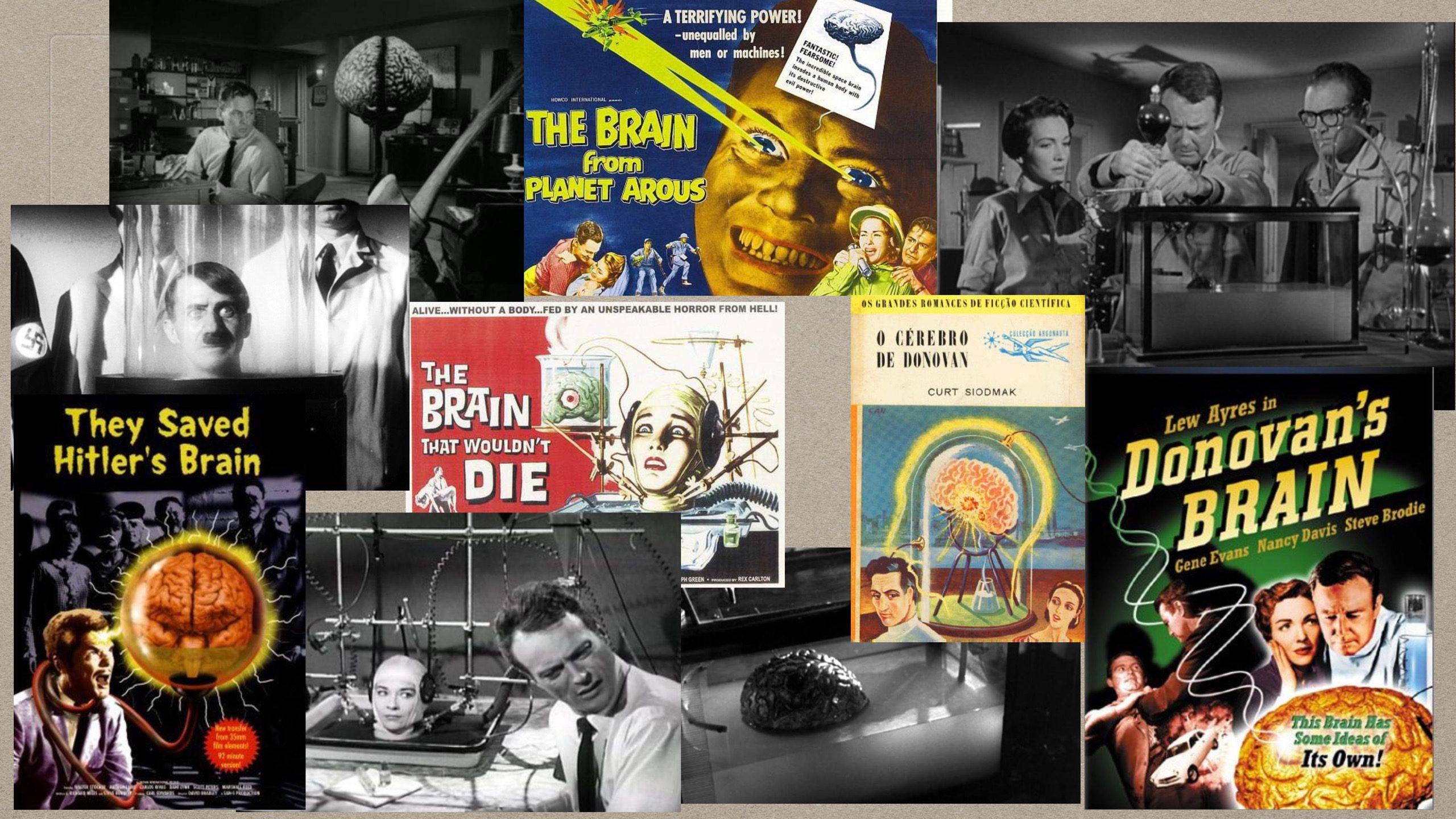 03-01-Brain Movies