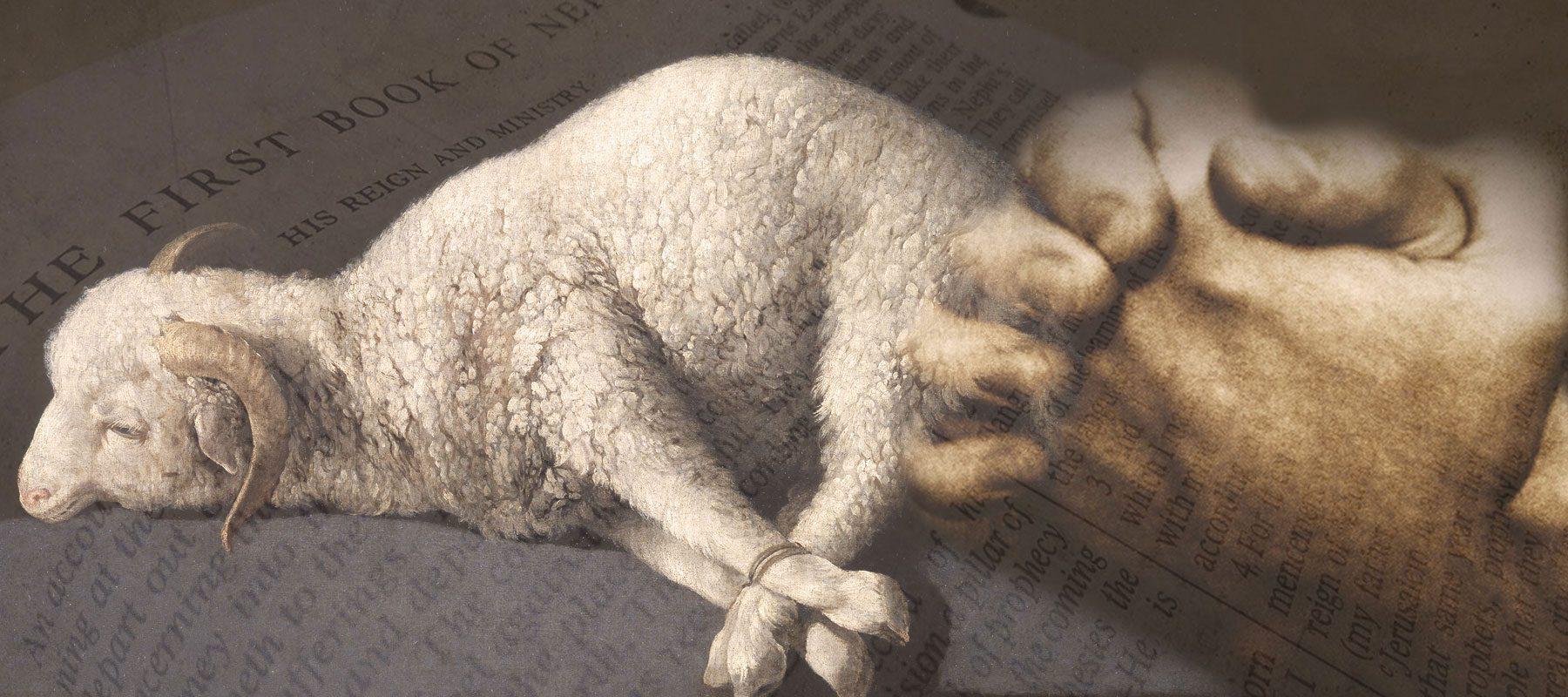 lamb-prayer