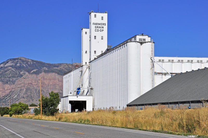 picture-6-grain-elevators