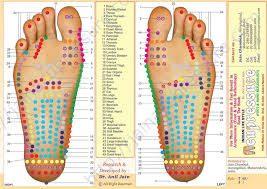 Foot refloxology chart