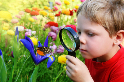 Child_Observing_A_Butterfly