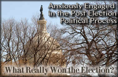 Anxiously Engaged in the Post Election Political Process: What Really Won the Election?